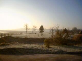 2006-01-25-Frosty Bay