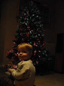 2004-12-25-Tree.JPG