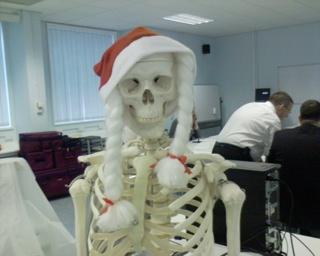 2006-12-07--Christmas Skeleton