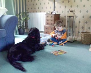 2007-06-08--Jack And Wilbur Build Lego
