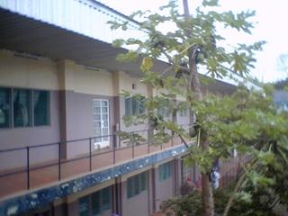 2007-09-26--Ward