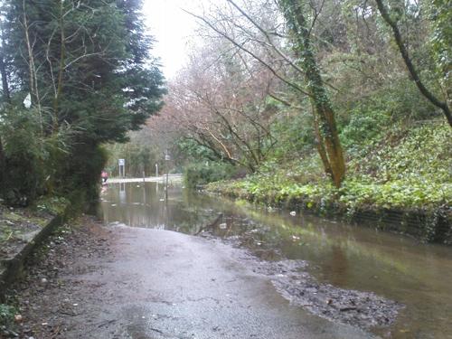 2008-01-15--Wet 1