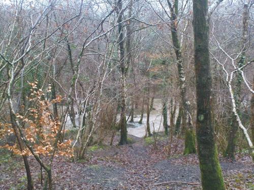2008-01-15--Wet 2