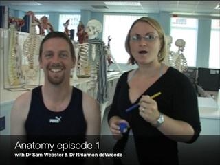 2008-06-02--Anatomy Video-1