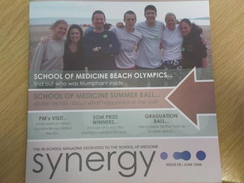 2008-06-30--Synergy