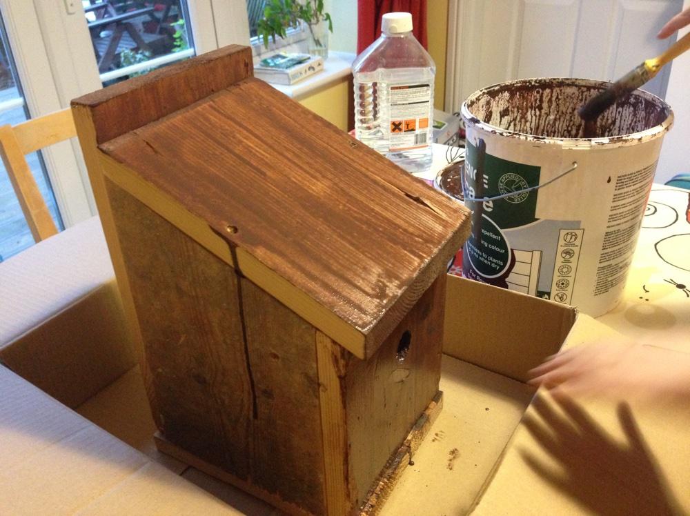 Painting Birdbox