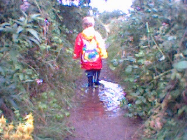 T630-puddles.jpg