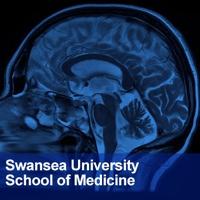 Neuroscience podcast