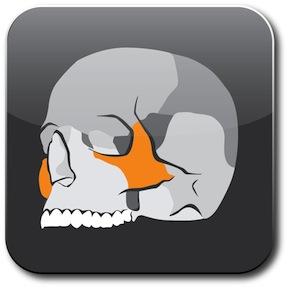 Skull App Icon 288Px