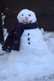 snowman_danescourt_svw_3.jpg